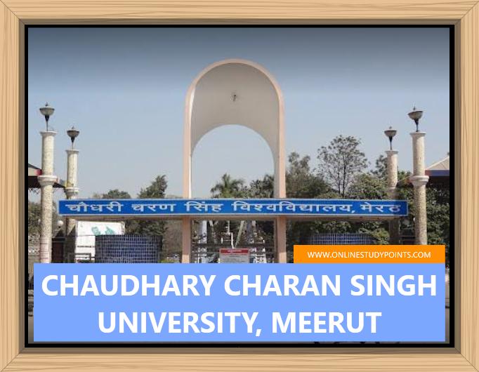 chaudhary charan singh university, meerut ( ccsu )